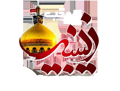 موکب زینبیه(س)